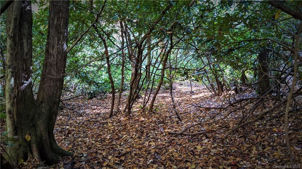 Photo of Lot #6 on Rush Ridge Trail, Fairview, NC 28734 (MLS # 3675119)