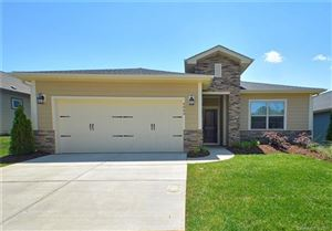Photo of 4843 Looking Glass Trail, Denver, NC 28037 (MLS # 3510133)