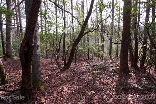 Photo of portion of Lot 8 Old Quebec Road #8, Lake Toxaway, NC 28747 (MLS # 3701134)