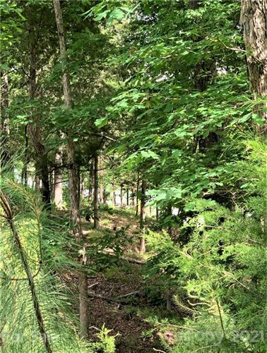 Photo of 6881 Pine Moss Lane, Clover, SC 29710 (MLS # 3737143)