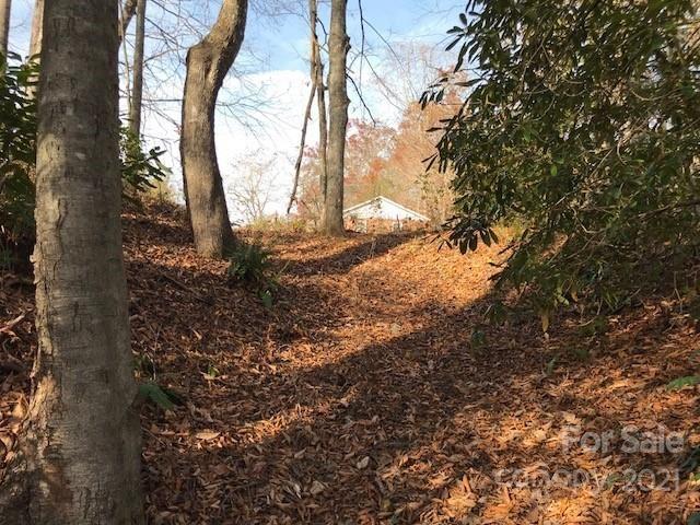 Photo of 99999 NC 9 Highway, Black Mountain, NC 28711 (MLS # 3700143)