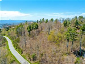 Photo of 159 Summit Tower Circle, Asheville, NC 28804 (MLS # 3383149)