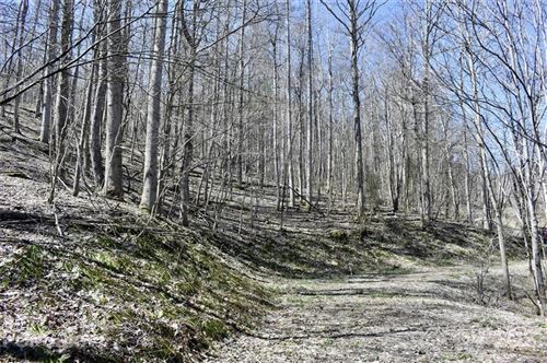 Photo of Lot 21 Rock Springs Road, Bakersville, NC 28705 (MLS # 3729156)