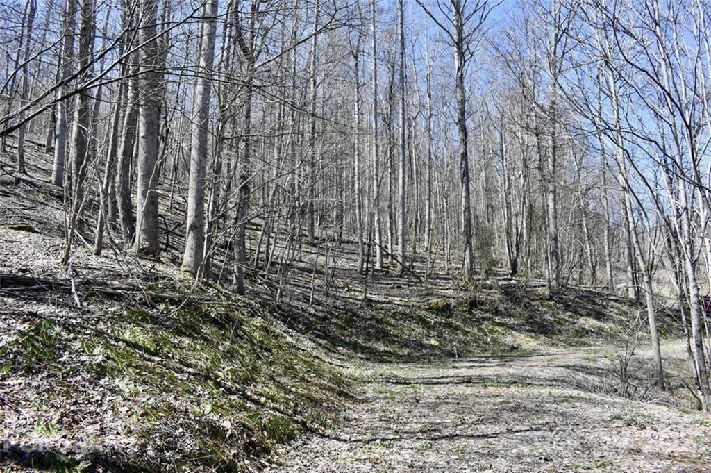 Photo of Lot 21 Rock Springs Road, Bakersville, NC 28705 (MLS # 3729156)