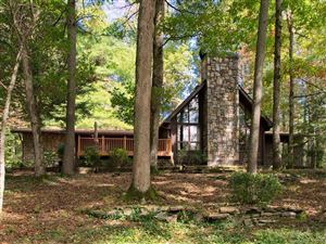 Photo of 2291 Little River Road, Hendersonville, NC 28739 (MLS # 3443169)