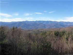 Photo of 10 Fox Tower Road, Brevard, NC 28712 (MLS # 3467170)