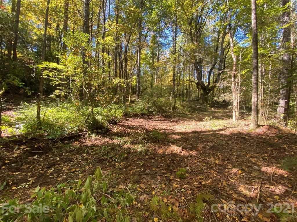 Photo of TBD Old Spring Road, Brevard, NC 28712 (MLS # 3662190)