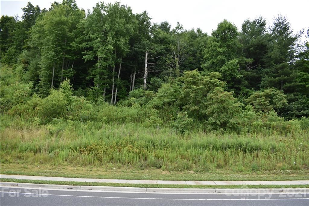 Photo of 00000 HWY 19E None, Burnsville, NC 28714 (MLS # 3762191)