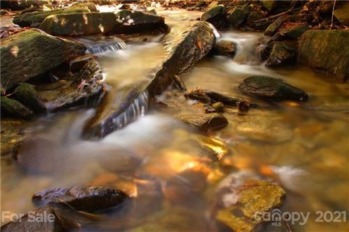 Photo of Lot 63 Peppervine Circle #63, Brevard, NC 28712 (MLS # 3235192)