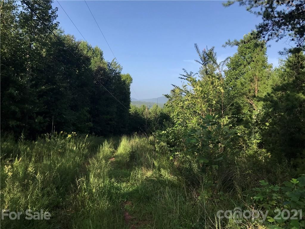 Photo of 0 ROY GOINS Road, Rutherfordton, NC 28139 (MLS # 3659192)