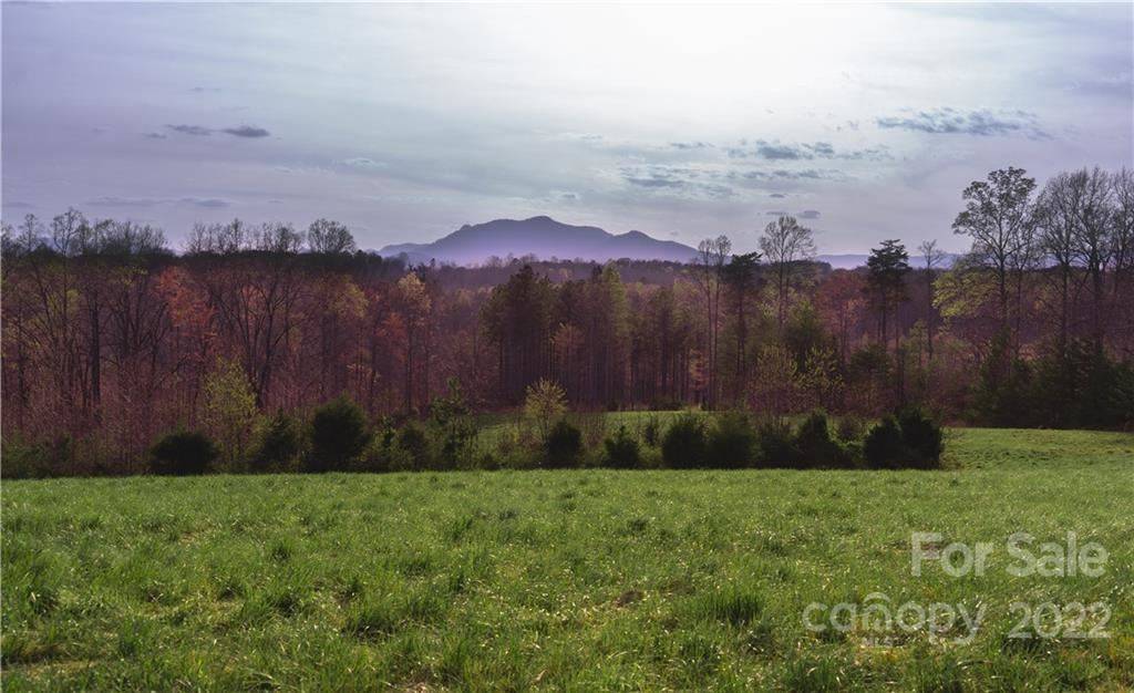 Photo of TBD Manus Chapel Road, Mill Spring, NC 28756 (MLS # 3738198)