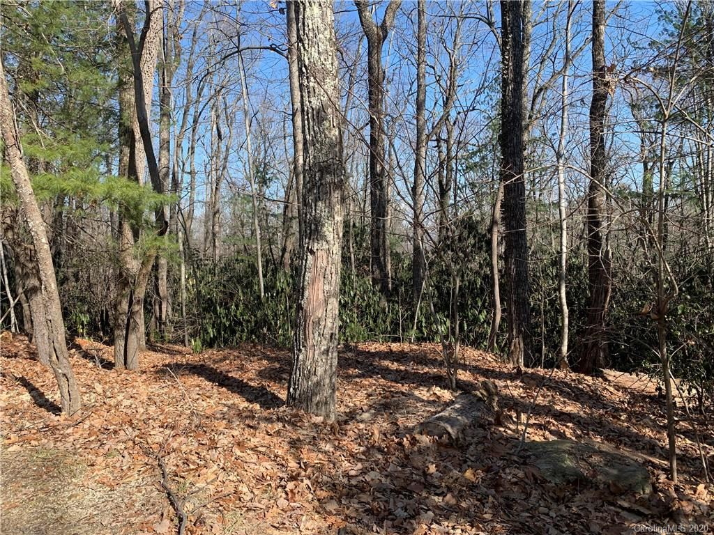 Photo of 00 Sabine Drive, Laurel Park, NC 28739 (MLS # 3585203)
