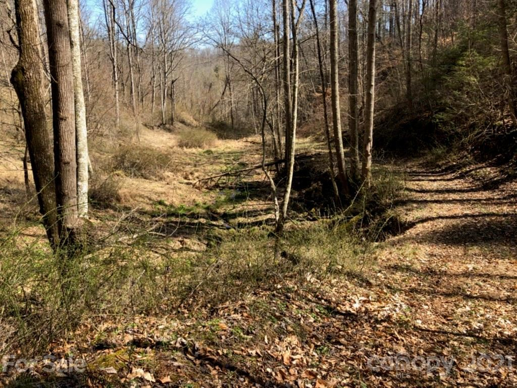 Photo of 0 Whitson Branch Road, Bakersville, NC 28705 (MLS # 3592210)