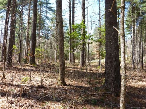 Photo of 41 Mountain Brook Trail, Brevard, NC 28712 (MLS # 3494216)