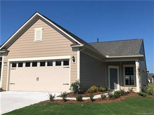 Photo of 743 Birchway Drive #167, Fort Mill, SC 29715 (MLS # 3509224)