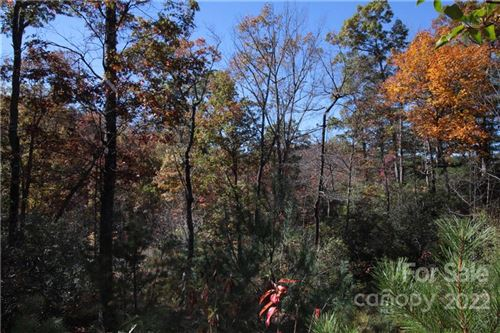Photo of Lot 9 Kelly Mountain Road, Brevard, NC 28712 (MLS # 3553225)