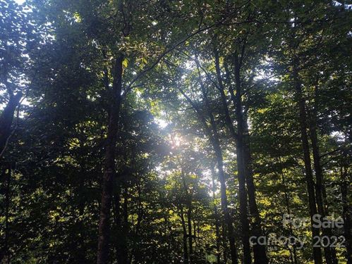 Photo of TBD Spruce Flats Road #39, Maggie Valley, NC 28751 (MLS # 3799233)