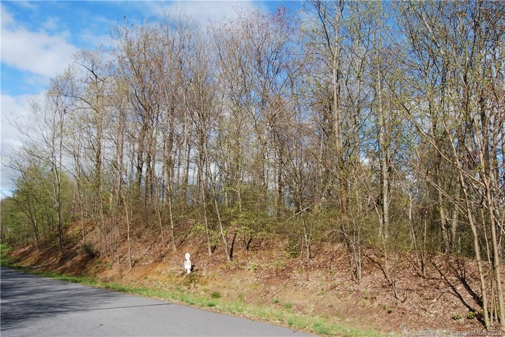 Photo of tbd Feather Falls Trail #5, Black Mountain, NC 28752 (MLS # 3673238)