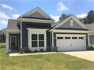 Photo of 132 Picasso Trail #64, Mount Holly, NC 28120 (MLS # 3446252)