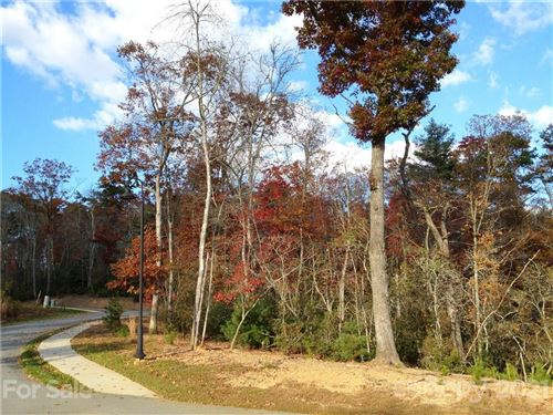Photo of tbd Springhouse Trail #5, Brevard, NC 28712 (MLS # 3789258)