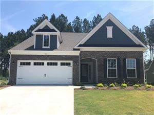 Photo of 324 Picasso Trail #178, Mount Holly, NC 28120 (MLS # 3446278)
