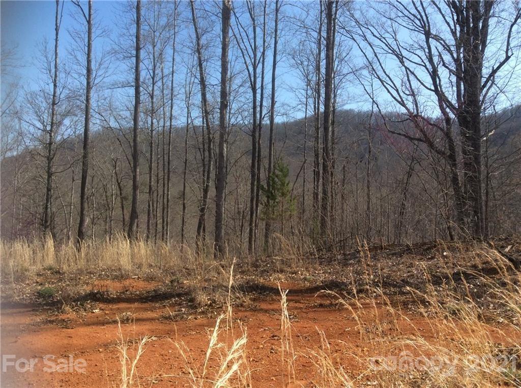 Photo of 999 HWY 226 Highway, Union Mills, NC 28167 (MLS # 3222297)