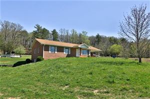 Photo of 2025 Gilliam Mountain Road, Hendersonville, NC 28792 (MLS # 3496304)