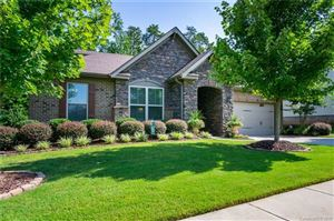 Photo of 784 Coralbell Way, Tega Cay, SC 29708 (MLS # 3525313)