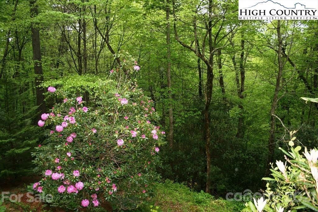 Photo of 269 Norwood Drive, Linville Falls, NC 28647 (MLS # 3728324)