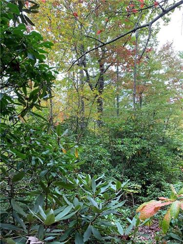 Photo of 000 Eastatoe Gap Road, Rosman, NC 28772 (MLS # 3560333)