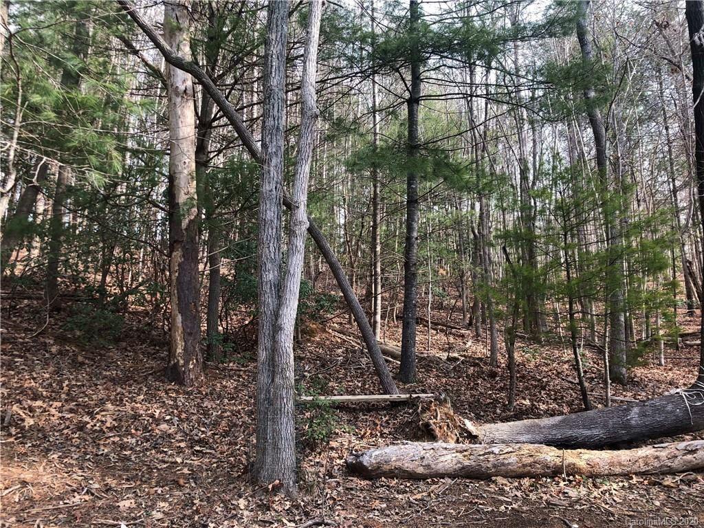 Photo of TBD Big Tree Way #13, Nebo, NC 28761 (MLS # 3605334)