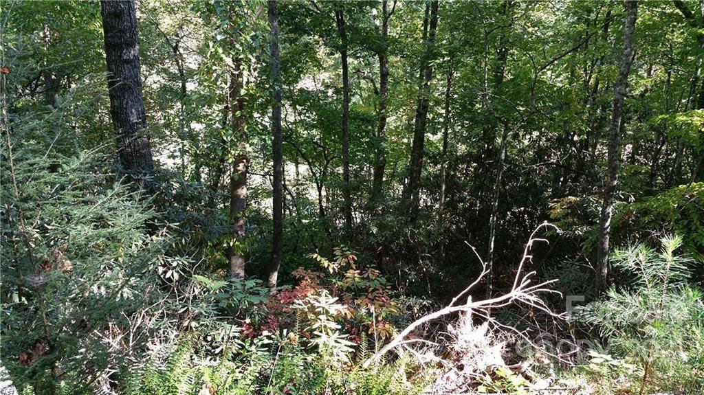 Photo of Lot 83 Grandview Drive #83, Lake Lure, NC 28746 (MLS # 3223348)