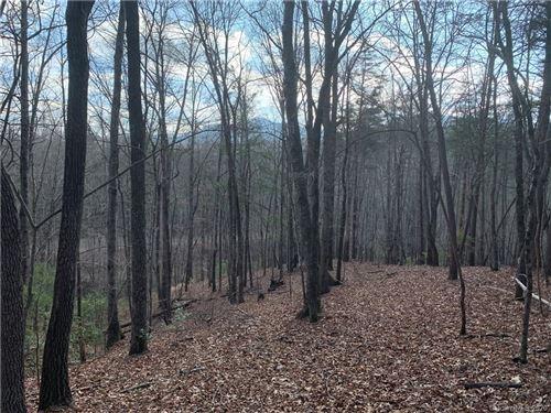 Photo of 1140 Lake Adger Parkway, Mill Spring, NC 28756 (MLS # 3578350)
