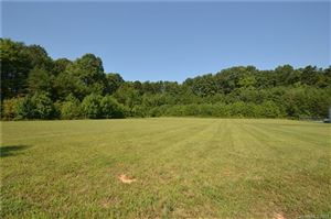 Photo of Lot 37 Denver Drive, Denver, NC 28037 (MLS # 3543358)