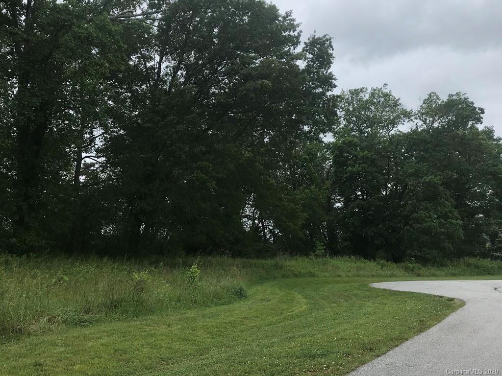 Photo of 635 Skytop Farm Lane, Hendersonville, NC 28791 (MLS # 3626359)