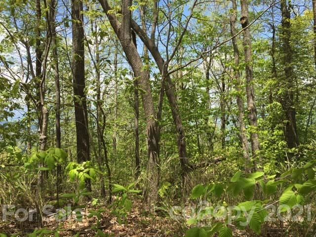 Photo of 823 Wolf Pen Road #823, Old Fort, NC 28762 (MLS # 3735369)