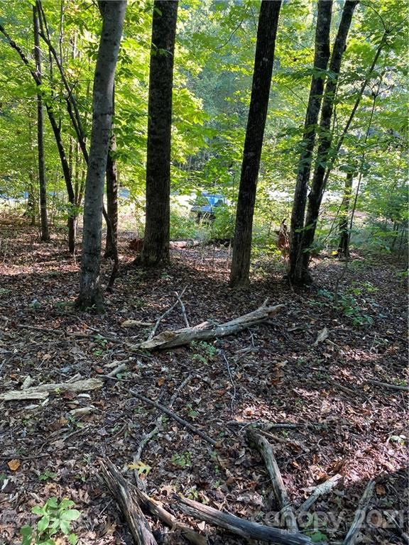 Photo of 000 Forest Country Drive #17, Marion, NC 28752 (MLS # 3793375)
