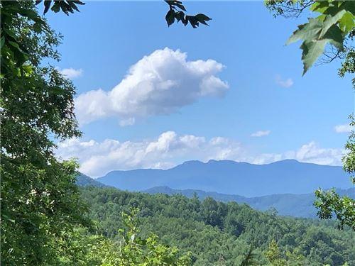 Photo of Lot 721, 1541 Prospectors Way, Lenoir, NC 28645 (MLS # 3514379)