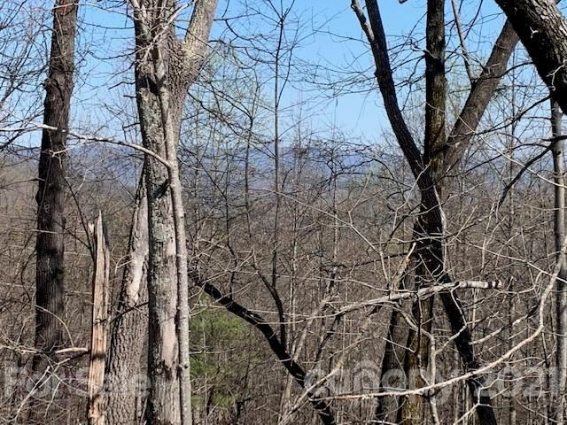 Photo of 0 Doubleview Drive #Lot1, Union Mills, NC 28617 (MLS # 3728384)