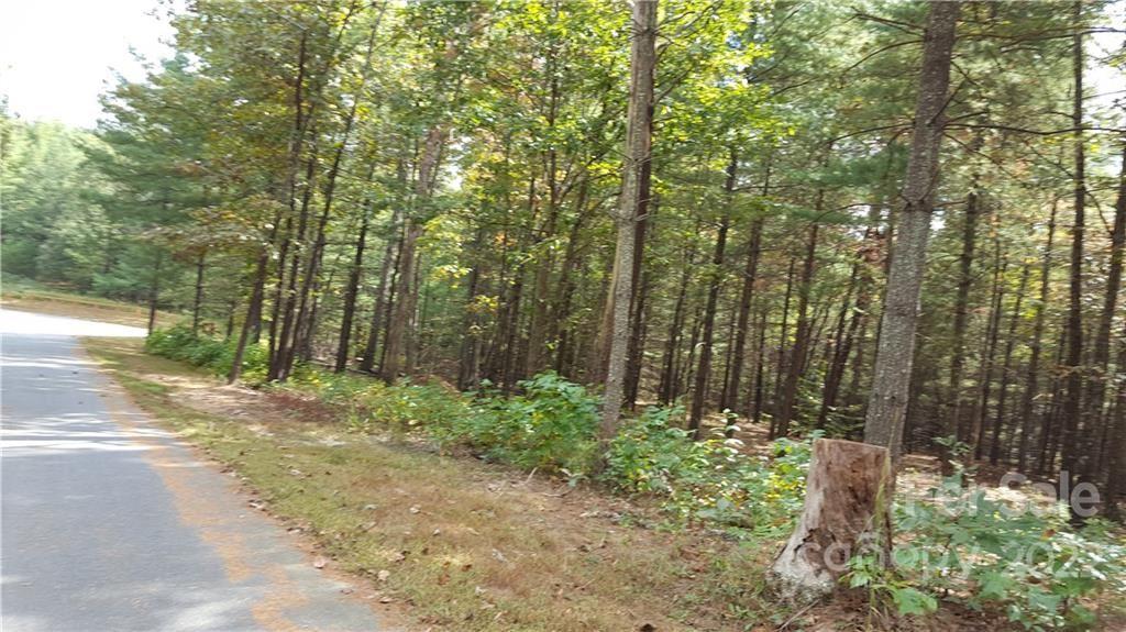 Photo of 1301 Scenic Vista Drive #292, Nebo, NC 28761 (MLS # 3793389)