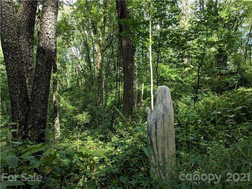 Photo of 50 Sassafras Gap Road, Asheville, NC 28804 (MLS # 3766403)