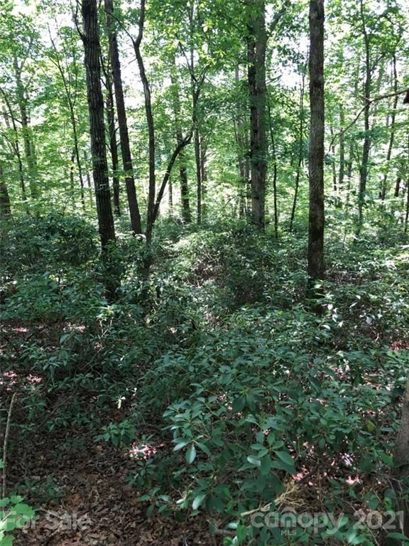 Photo of 0 Downing Place #34, Lake Lure, NC 28746 (MLS # 3760415)