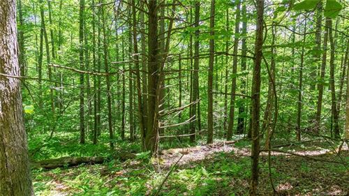 Photo of 7 Otter Lane, Spruce Pine, NC 28777 (MLS # 3631428)