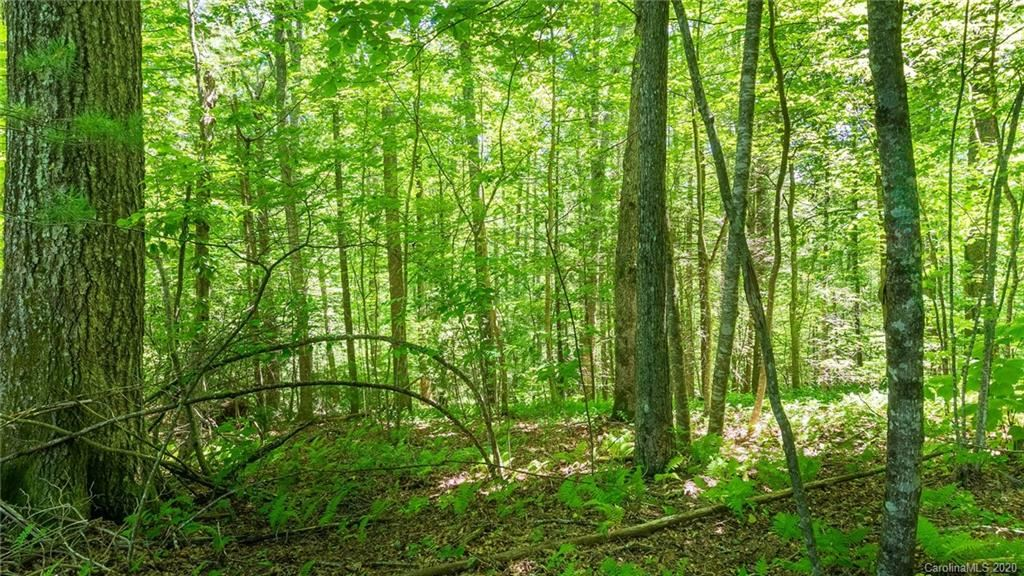 Photo of 7 Otter Lane, Spruce Pine, NC 28777 (MLS # 3631428)