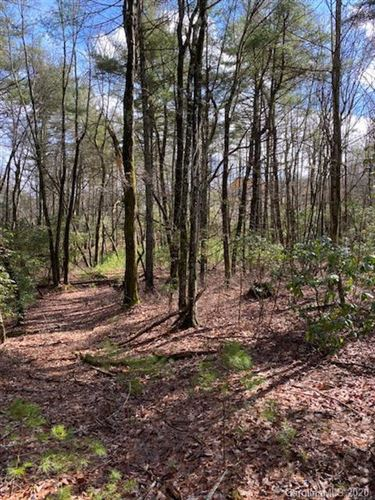 Photo of Lot 163A Eagle Lake Drive #163A, Brevard, NC 28712 (MLS # 3589434)