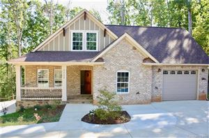 Photo of 7328 Hagers Hollow Drive, Denver, NC 28037 (MLS # 3559438)