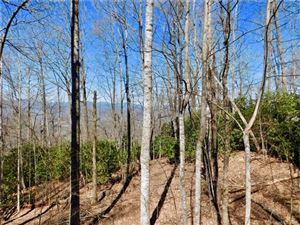 Photo of Lot 40 Skye Drive, Pisgah Forest, NC 28768 (MLS # 3484439)