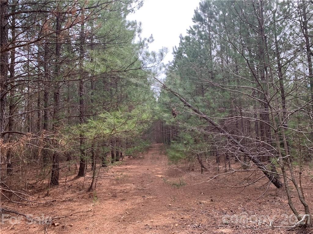 Photo of 999 Green River Cove Road #12, Mill Spring, NC 28756 (MLS # 3717453)