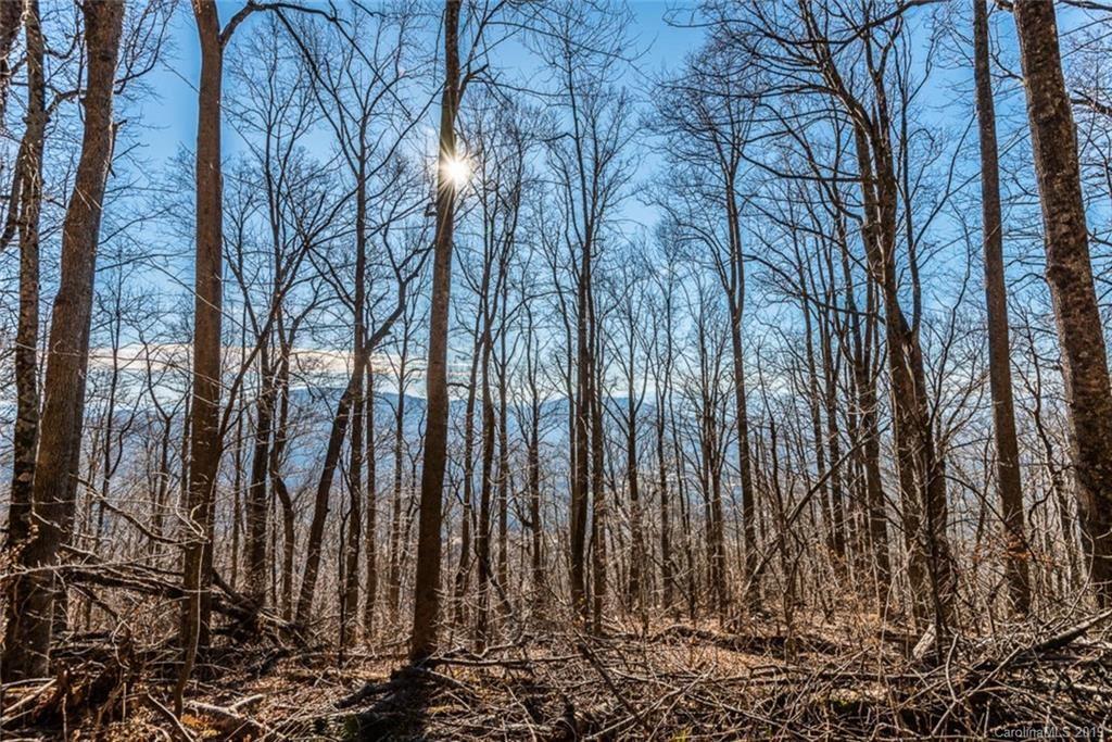 Photo of 000 Winding Ridge Road, Fairview, NC 28730 (MLS # 3465463)
