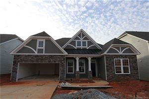 Photo of 1413 Native Diver Lane, Indian Trail, NC 28079 (MLS # 3435471)